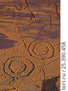 Купить «Concentric circles at Ewaninga Rock Carvings Conservation Reserve, South of Alice Springs, Northern Territory, Australia», фото № 25390458, снято 16 декабря 2017 г. (c) Nature Picture Library / Фотобанк Лори