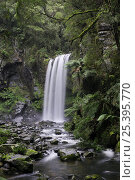 Hopetoun Falls on Aire River, Great Otway National Park, Victoria, Australia. Стоковое фото, фотограф Jouan Rius / Nature Picture Library / Фотобанк Лори