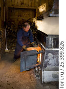 Купить «Tending the fire under a sap evaporator in a sugar house in Barrington, New Hampshire, USA. the Sugar Shack, manufacture of maple syrup.», фото № 25399826, снято 27 мая 2018 г. (c) Nature Picture Library / Фотобанк Лори