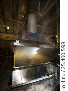 Купить «A sap evaporator in a sugar house in Barrington, New Hampshire, USA. The Sugar Shack, manufacture of maple syrup.», фото № 25400598, снято 15 ноября 2018 г. (c) Nature Picture Library / Фотобанк Лори