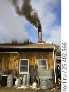 Купить «Wood smoke and steam pours out of the chimneys of a sugar house in Barrington, New Hampshire, USA. The Sugar Shack, manufacture of maple syrup.», фото № 25402566, снято 27 мая 2018 г. (c) Nature Picture Library / Фотобанк Лори