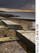 Купить «Remains of D-Day preparation structures on Lepe  beach, New Forest National Park, Hampshire, England», фото № 25404134, снято 22 июля 2018 г. (c) Nature Picture Library / Фотобанк Лори