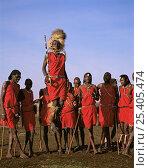 Купить «Masai warriors in full ceremonial dress, doing their famed high leaps. Masai Mara National Reserve, Kenya», фото № 25405474, снято 17 августа 2018 г. (c) Nature Picture Library / Фотобанк Лори