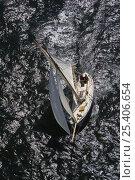 """Купить «Gaff cutter """"Velsia"""" under sail, Douarnenez Maritime Festival, France, July 2008», фото № 25406654, снято 24 сентября 2018 г. (c) Nature Picture Library / Фотобанк Лори"""