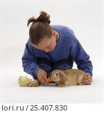 Купить «Girl feeding a carrot to a young sandy lop-eared cross rabbit», фото № 25407830, снято 26 марта 2019 г. (c) Nature Picture Library / Фотобанк Лори