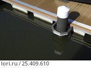 Купить «Pontoon mooring in Bristol harbour, Bristol Floating Harbour, 2008», фото № 25409610, снято 16 августа 2018 г. (c) Nature Picture Library / Фотобанк Лори