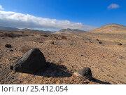 Купить «Istmo de la Pared (Isthmus of the Wall) Rural Reserve, Fuerteventura, Canary Isles, Spain, September 2007», фото № 25412054, снято 19 июля 2018 г. (c) Nature Picture Library / Фотобанк Лори