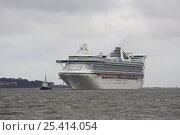 Купить «MS Grand Princess, arriving Liverpool UK», фото № 25414054, снято 6 июля 2020 г. (c) Nature Picture Library / Фотобанк Лори