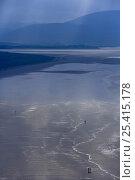 Купить «Distant figures walking on the beach at low tide, Inch Strand, Dingle Peninsula, Co Kerry, Ireland», фото № 25415178, снято 21 сентября 2018 г. (c) Nature Picture Library / Фотобанк Лори