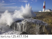 Купить «Waves crashing over the rocks at Portland Bill with lighthouse in the background, Dorset, UK», фото № 25417154, снято 22 мая 2018 г. (c) Nature Picture Library / Фотобанк Лори