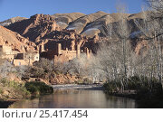 Купить «View of Kasbah of Ait Arbi from the river, with snowy hill tops in the background. Dades Valley, Morocco December 2007», фото № 25417454, снято 15 августа 2018 г. (c) Nature Picture Library / Фотобанк Лори