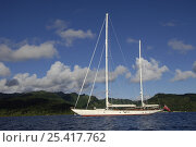"Купить «SY ""Adele"", 180 foot Hoek Design, anchored in French Polynesia, 2006.  Non editorial uses must be cleared individually.», фото № 25417762, снято 17 августа 2018 г. (c) Nature Picture Library / Фотобанк Лори"