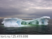 Arched iceberg floating off the western Antarctic peninsula, Southern Ocean. Стоковое фото, фотограф Steven Kazlowski / Nature Picture Library / Фотобанк Лори