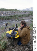 Alastair Fothergill, Producer, at Penguin colony in South Georgia with satellite link-up to BBC NHU in Bristol, UK, January 1998. Стоковое фото, фотограф Doug Allan / Nature Picture Library / Фотобанк Лори