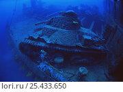 Купить «Japanese Tank on the wreck of the deck of the 'San Francisco Maru', Chuuk / Truk lagoon, Chuuk islands, pacific ocean islands», фото № 25433650, снято 17 июля 2018 г. (c) Nature Picture Library / Фотобанк Лори