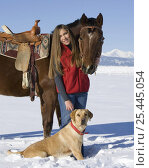 Купить «Woman with bay Quarter horse gelding and yellow Labrador retreiver, in snow Longmont, Colorado, USA.», фото № 25445054, снято 23 мая 2018 г. (c) Nature Picture Library / Фотобанк Лори