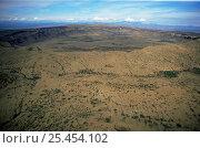 Купить «Aerial view inside of Silali crater, Gregory Rift, Kenya», фото № 25454102, снято 5 апреля 2020 г. (c) Nature Picture Library / Фотобанк Лори