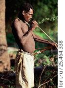 Купить «Hadzabe bushman holding traditional bow and arrow with two hunted ground squirrel tucked under belt, Lake Eyasi, Tanzania.», фото № 25464338, снято 14 ноября 2019 г. (c) Nature Picture Library / Фотобанк Лори