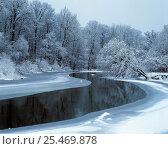 Купить «Nerussa river beginning to freeze, Bryansky Les Zapovednik, Russia.», фото № 25469878, снято 19 ноября 2019 г. (c) Nature Picture Library / Фотобанк Лори