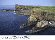 Купить «Basalt columns on Staffa Is, Inner Hebrides, Scotland UK», фото № 25477962, снято 14 августа 2018 г. (c) Nature Picture Library / Фотобанк Лори