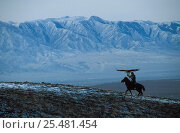 Купить «Mounted Kazakh hunter with Golden eagle trained to hunt wolf + fox for fur, Kazakhstan», фото № 25481454, снято 17 января 2018 г. (c) Nature Picture Library / Фотобанк Лори