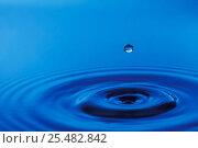 Купить «Water rebounding from impact of single drop, sequence 03-Mar», фото № 25482842, снято 14 августа 2018 г. (c) Nature Picture Library / Фотобанк Лори