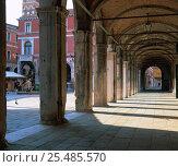 Купить «Colonnade in Rialto market square, Venice, Italy», фото № 25485570, снято 17 августа 2018 г. (c) Nature Picture Library / Фотобанк Лори