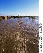Купить «River Trent during flooding, winter 2000, Swarkestone, Derbyshire, UK.», фото № 25495386, снято 21 февраля 2018 г. (c) Nature Picture Library / Фотобанк Лори