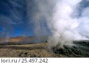 Sol de Manana fumeroles at 4850 metres, Altiplano region, Bolivia, South America. Стоковое фото, фотограф Pete Oxford / Nature Picture Library / Фотобанк Лори