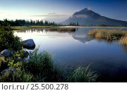 Купить «View over Vermillion Lake towards Mount Rundle, Banff NP, Alberta, Canada, North America», фото № 25500278, снято 31 мая 2020 г. (c) Nature Picture Library / Фотобанк Лори