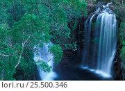 Купить «Florence Falls in Litchfield National Park, Northern Territories, Australia», фото № 25500346, снято 22 февраля 2019 г. (c) Nature Picture Library / Фотобанк Лори