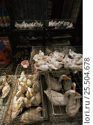 Купить «Live ducks and doves for sale in food market, Xian, Shaanxi province, China», фото № 25504678, снято 16 декабря 2017 г. (c) Nature Picture Library / Фотобанк Лори