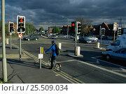 Купить «Cyclist at road junction on city cycle path, Bristol, UK», фото № 25509034, снято 12 ноября 2019 г. (c) Nature Picture Library / Фотобанк Лори
