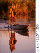 Купить «Local man in dugout canoe (mokoro), Okavango Delta, Botswana,», фото № 25514350, снято 25 марта 2019 г. (c) Nature Picture Library / Фотобанк Лори