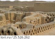 Купить «Chan Chan, adobe city. 1000 year old ruins at Truijillo, Peru. Capital of Chimu Kingdom.», фото № 25526262, снято 28 мая 2018 г. (c) Nature Picture Library / Фотобанк Лори