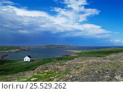Купить «Solitary boathouse on the coast of St Mary Islands, Newfoundland, Canada», фото № 25529262, снято 24 сентября 2018 г. (c) Nature Picture Library / Фотобанк Лори