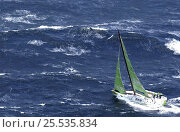 """""""SEB"""" races towards Hobart on leg 3 of the Volvo Ocean Race, 2001-02. Стоковое фото, фотограф Rick Tomlinson / Nature Picture Library / Фотобанк Лори"""