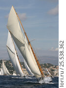 Купить «Classic yachts racing in Cannes Royal Regatta, France, 2007. All non-editorial uses must be cleared individually.», фото № 25538362, снято 16 июля 2018 г. (c) Nature Picture Library / Фотобанк Лори