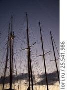 Купить «Masts and rigging at dusk. Panerai Classics, Sardinia, September 2007.», фото № 25541986, снято 16 августа 2018 г. (c) Nature Picture Library / Фотобанк Лори