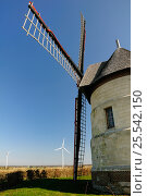 "Купить «21st Century wind turbines beside restored 17th Century Windmill ""Le moulin Guidon"", Eaucourt-sur-Somme, France, March 2009», фото № 25542150, снято 23 июля 2018 г. (c) Nature Picture Library / Фотобанк Лори"