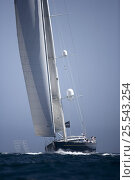 """Купить «""""Janice of Wyoming"""" designed by Dubois and built by Alloy, length 39mm sailing upwind. The Superyacht Cup, Palma de Mallorca, June 2007.», фото № 25543254, снято 19 июля 2018 г. (c) Nature Picture Library / Фотобанк Лори"""