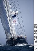 "Купить «""Meteor"" designed by Dijkstra and Huisman, length 51.6m sailing upwind. The Superyacht Cup, Palma de Mallorca, June 2007.», фото № 25543258, снято 19 января 2020 г. (c) Nature Picture Library / Фотобанк Лори"