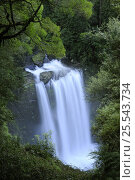 Hopetown Falls on Aire River, Great Otway National Park, Victoria, Australia. Стоковое фото, фотограф Jouan Rius / Nature Picture Library / Фотобанк Лори