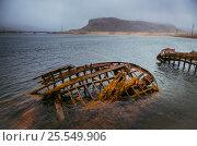 Старые лодки, Териберка. Стоковое фото, фотограф Елена Корнеева / Фотобанк Лори