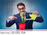 Купить «Businessman in new business concept», фото № 25555754, снято 4 августа 2020 г. (c) Elnur / Фотобанк Лори