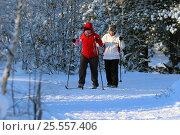 Купить «Женщины на лыжной прогулке в кедровой роще», эксклюзивное фото № 25557406, снято 12 февраля 2017 г. (c) Григорий Писоцкий / Фотобанк Лори