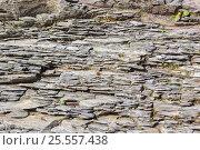 Купить «Каменный берег горной реки», фото № 25557438, снято 14 августа 2016 г. (c) Евгений Рашевский / Фотобанк Лори