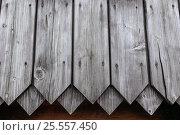 Купить «Фон стена из старых деревянных досок», фото № 25557450, снято 14 августа 2016 г. (c) Евгений Рашевский / Фотобанк Лори