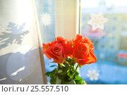 Купить «Bouquet of rosea in a glass vase near the window», фото № 25557510, снято 16 января 2017 г. (c) Валерия Потапова / Фотобанк Лори