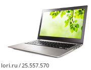 Modern laptop computer with green leaves wallpaper, isolated on a white background. Стоковое фото, фотограф Валерия Лузина / Фотобанк Лори